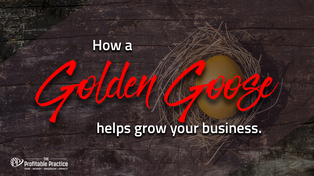 How a Golden Goose helps grow your business